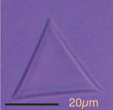 Denkov&2015 Fig2b triangle.jpg